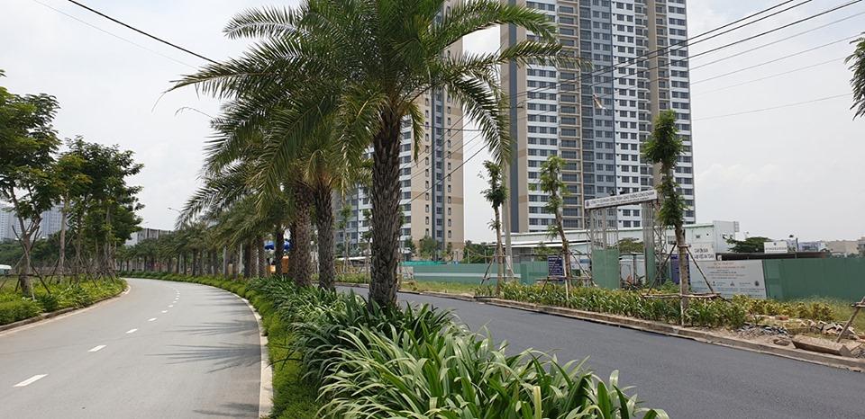palm city tien phuoc