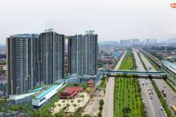 25 Dự Án Căn Hộ Mở Bán 2020 Tại Thành Phố Hồ Chí Minh